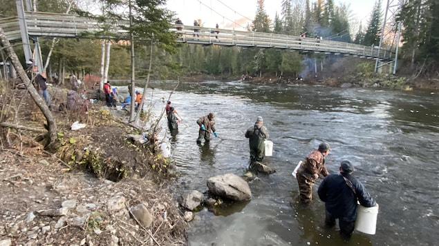 Des dizaines de pêcheurs se rassemblent pour la pêche traditionnelle au corégone nain, communément appelé pointu.