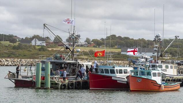 Plusieurs bateaux de pêche amarrés au quai.