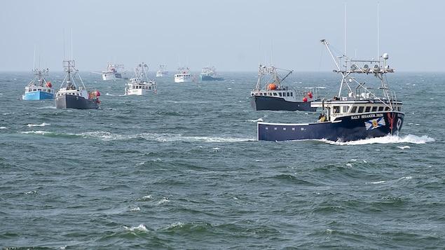 Une dizaine de bateaux sur l'eau.