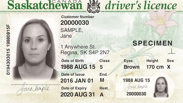 Un permis de conduire de la Saskatchewan avec un X dans le champ pour indiquer le genre.