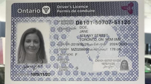 Une version générique du permis de conduire de l'Ontario avec la photo d'une femme