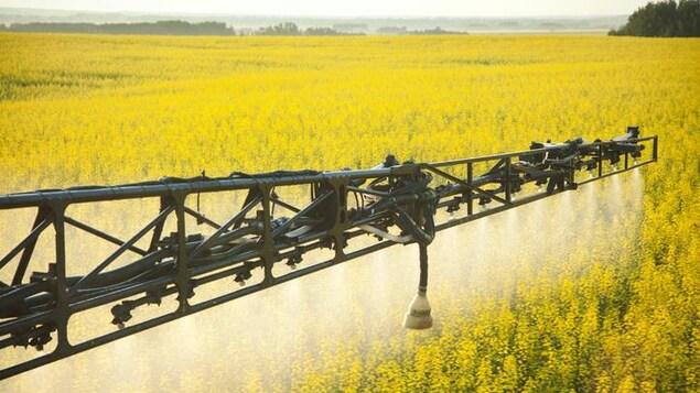 Épandage mécanisé de pesticides sur un champ.