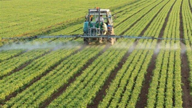 Un tracteur répand des pesticides dans un champ.
