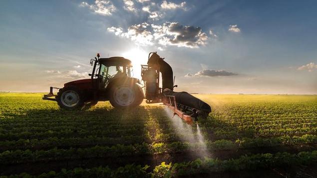 Épandage de pesticides sur un champ de soya.