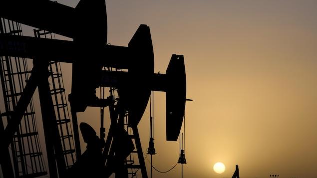 Des pompes installées sur des puits de pétrole.