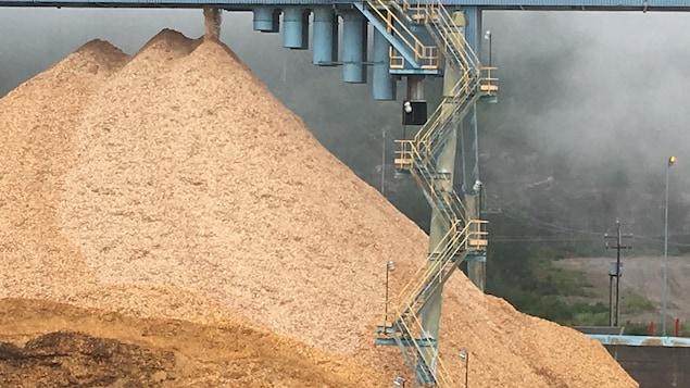 Une montagne de copeaux de bois et des escaliers.