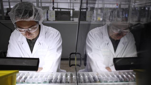Un employé observe une chaîne de production.