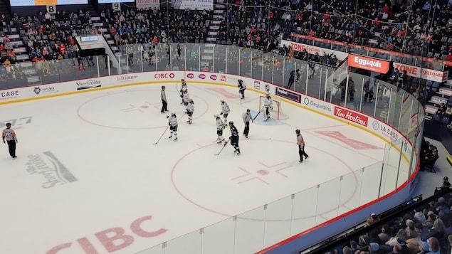 Les joueurs du Phoenix sur la glace.