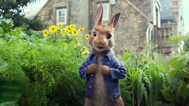 Pierre Lapin, la lapin animé qui est le personnage principal du film qui porte son nom, au milieu d'un jardin