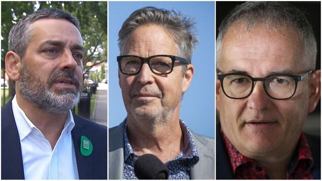 Pierre Nantel (Parti vert), Éric Ferland (Nouveau Parti démocratique) et Réjean Hébert (Parti libéral du Canada) se présentent tous dans la circonscription Longueuil—Saint-Hubert.