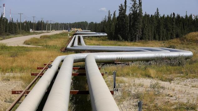 Trois pipelines de Cenovus Energy à Fort McMurray en Alberta longent une route et une forêt.