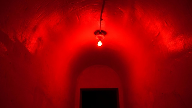 Un plafond arrondi éclairé par une ampoule rouge indigo.