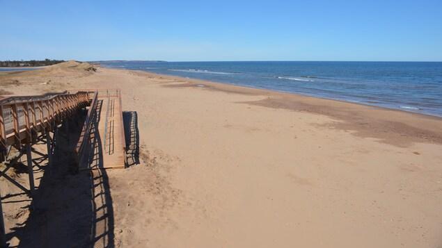 Vue de la plage déserte de Cavendish.