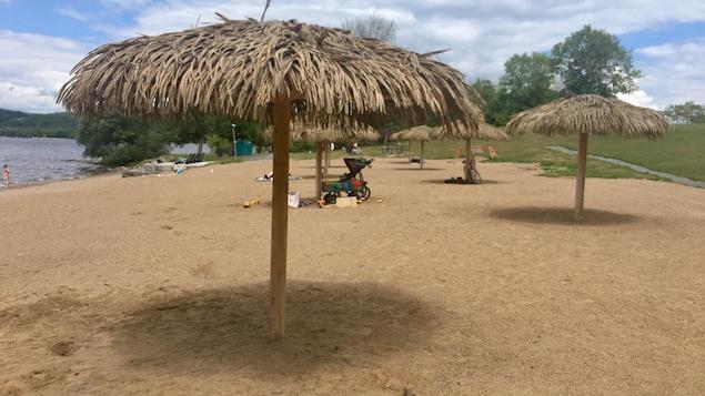 Une plage avec des palapas, des parasols dans de bois.