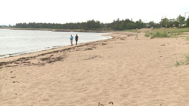 Une plage donnant sur une baie. Deux personnes y marchent.