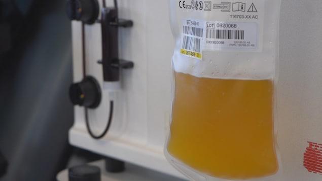 Une poche de plasma.