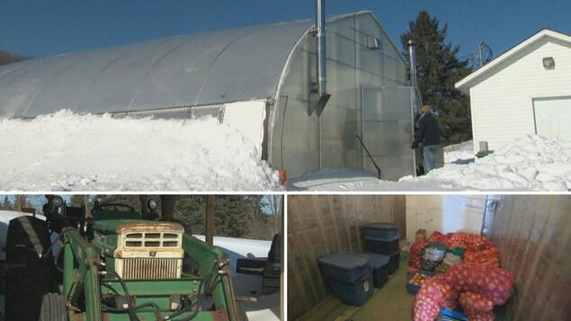 Montage photo : une serre en hiver, un tracteur et des oignons conservés dans une chambre froide.