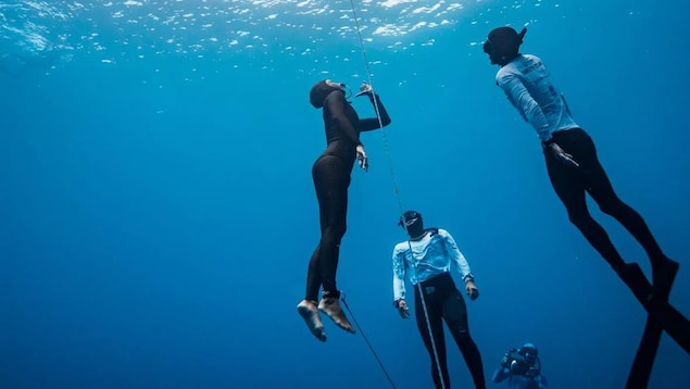 Une plongeuse sous l'eau regarde vers la surface en compagnie d'autres plongeurs.