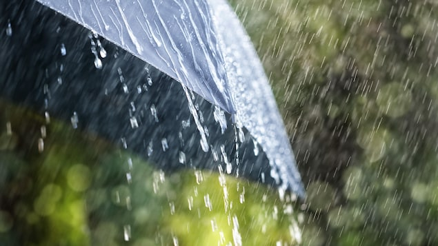 De la pluie tombe sur un parapluie.