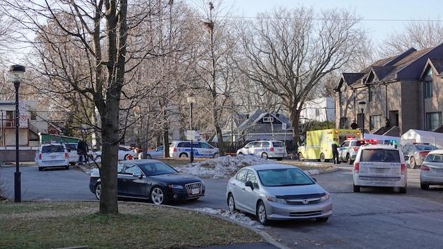 Des voitures de police, une ambulance et des voitures dans une rue bordée d'arbres et de maisons.
