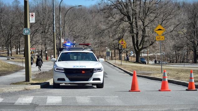 Une voiture de police, gyrophares allumés, est stationnée dans un parc.