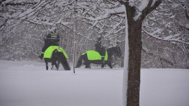 Deux policiers à cheval dans la neige