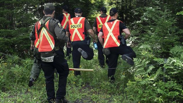 Des policiers effectuent des recherches en forêt.