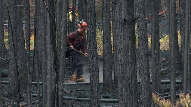 Un pompier forestier au travail dans la forêt.