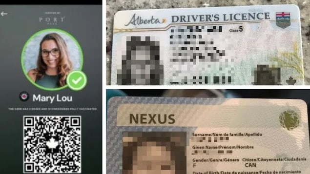 Vaccine passport app Portpass may have exposed users' personal data like drivers' licences and photos. CBC was able to access the photos on the right that belong to users on the app. The IDs have been blurred to protect those users' identities and information.