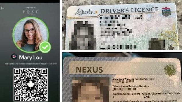 Iba't ibang mga ID.