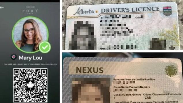 Un montage photo montre à quoi ressemble l'application Portpass ainsi qu'une photo d'un permis de conduire et d'une carte Nexus.