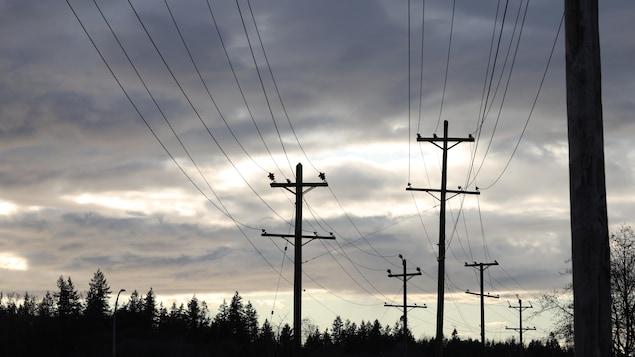Une demi-douzaine de poteaux de téléphone au crépuscule.