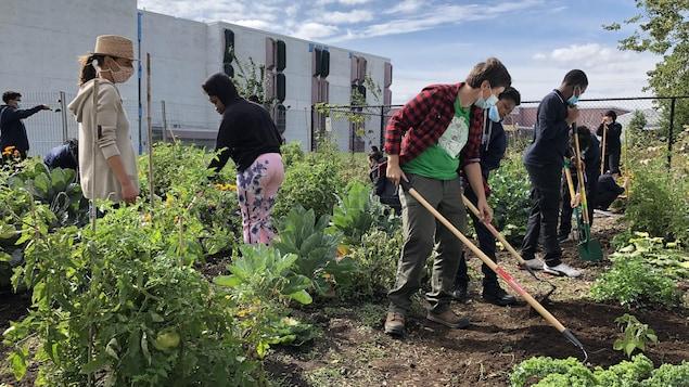 Les élèves travaillent dans leur jardin.