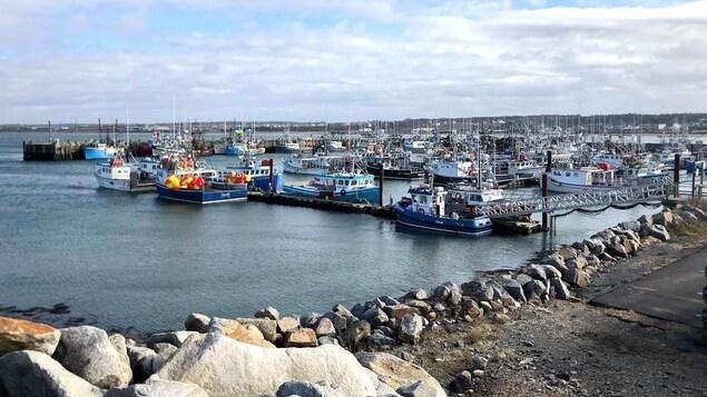 Un quai avec des bateaux de pêche au homard en Nouvelle-Écosse.