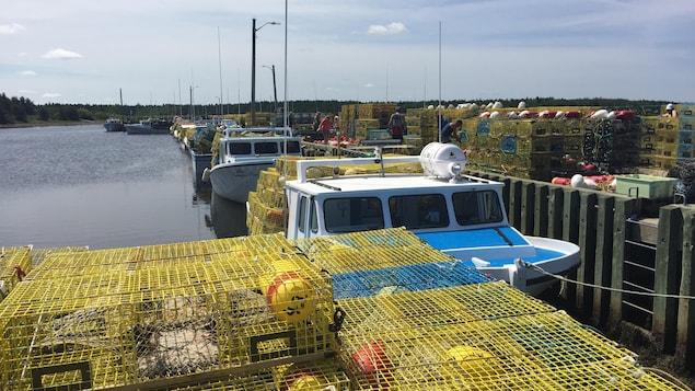 Des casiers à homards sur le quai.