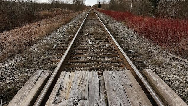 La voie ferrée en Gaspésie
