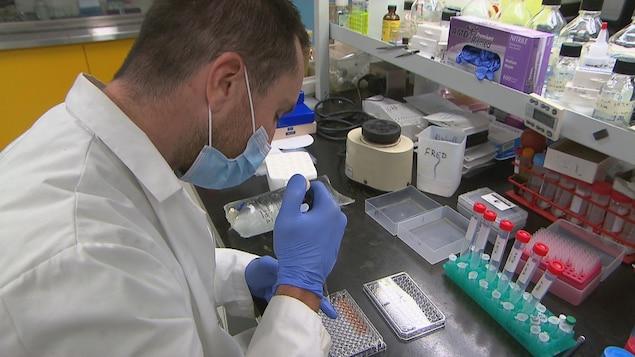 Un chercheur du CHUS fait des tests dans un laboratoire.