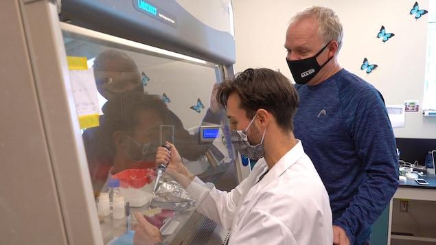 Des chercheurs manipulent des échantillons.