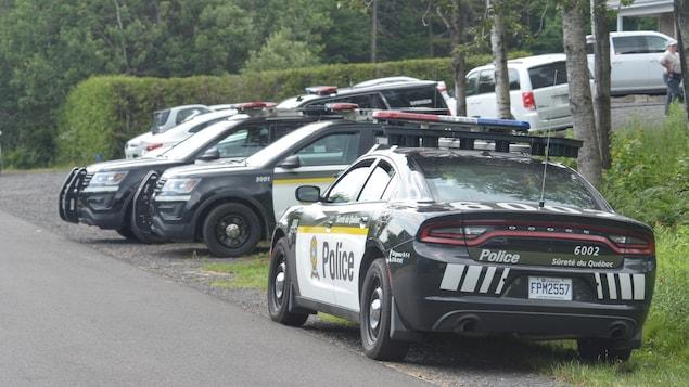 De nombreuses voitures de police immobilisées en bordure d'une route.