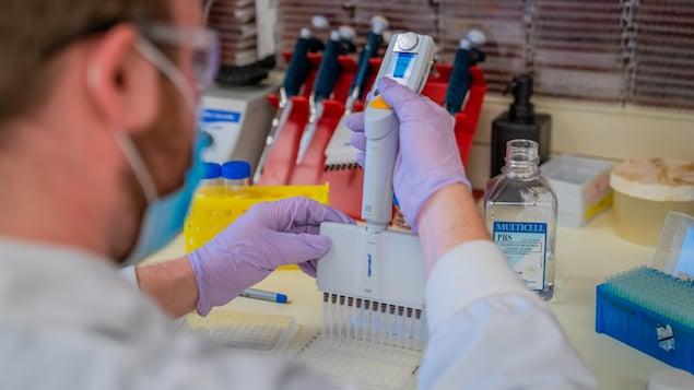 Un chercheur dans un laboratoire faisant des tests.