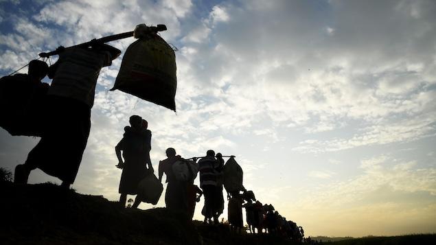 Des familles de Rohingyas transportent leurs biens et leurs enfants. Elles marchent en file indienne, en longeant un cours d'eau.