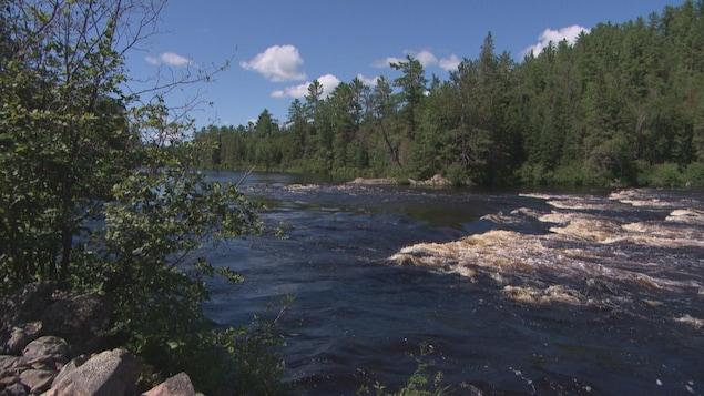 Le courant est très fort en cette période de l'année dans la rivière Coulonge en Outaouais.