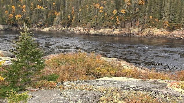 Un secteur calme de la rivière Magpie, à l'automne.