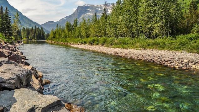 Une rivière traversant le parc national de Glacier, au Montana.
