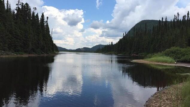 La rivière Pikauba est calme et elle a l'apparence d'un miroir.