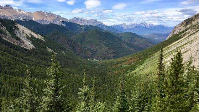 De grosses montagnes, des arbres verts et un ciel bleu.