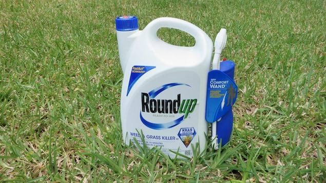 Une bouteille de Roundup posé sur une pelouse.