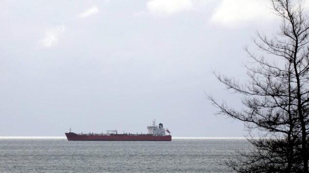 Le pétrolier sur l'eau, photographié de la berge.