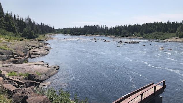 Vue sur la rivière entourée de conifères par une journée ensoleillée.