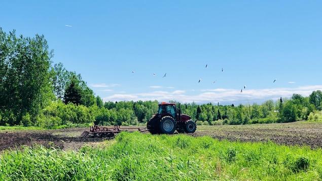 Un agriculteur conduit son tracteur dans un champ.